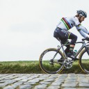Cadres Specialized Peter Sagan 01