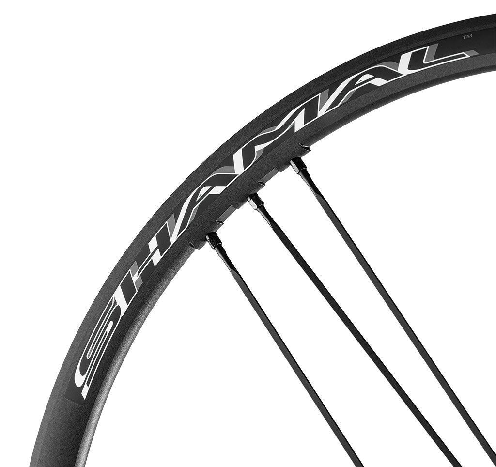 Campagnolo Shamal Ultra Disc 2 Way Fit