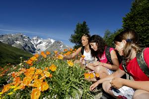 Séjour dans les Hautes Alpes - Serre Chevalier - Lautaret